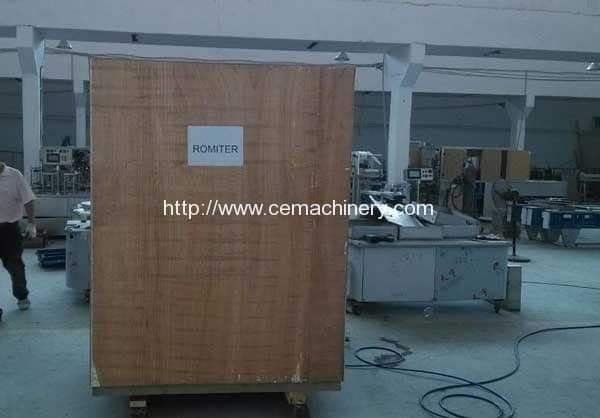 Delivery-Package-of-Rotary-Type-Coffee-Capsule-Filling-Sealing-Machine