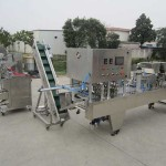 Nespresso Capsules Filling Sealing Machine with Plastic Bag Packing Line