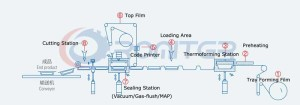 Working-Process-of-Thermoforming-Packing-Machine